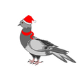 A christmas dove on a white background vector