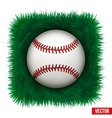 Icon baseball ball in green grass vector