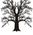 Tree oak silhouette vector