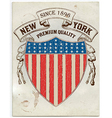 Vintage american label vector