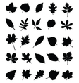 Foliage 2 vector