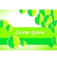 Lime citrus backgrounds fruits vector