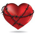 Red heart with barbed metal wire vector