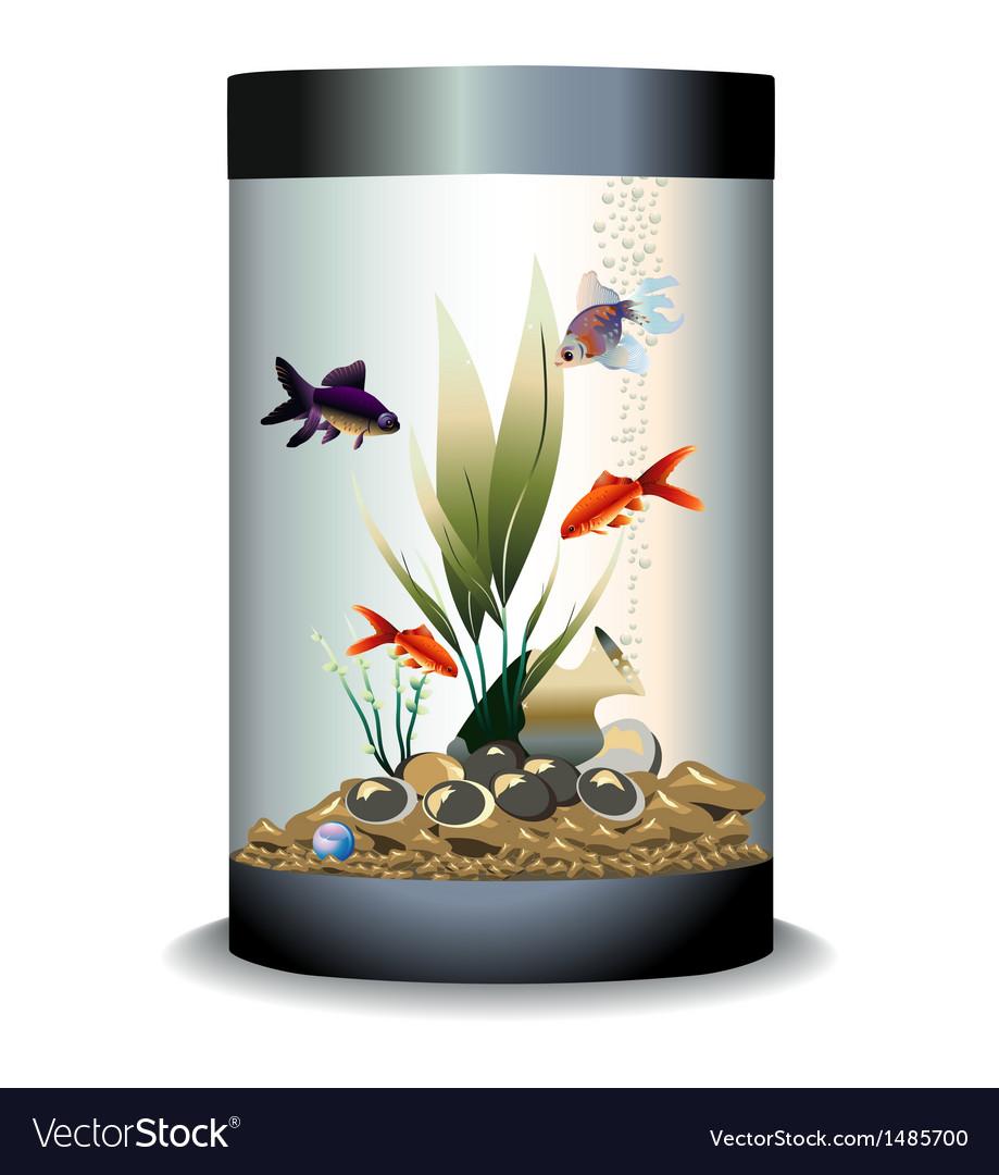 Aquarium with fishes vector   Price: 1 Credit (USD $1)