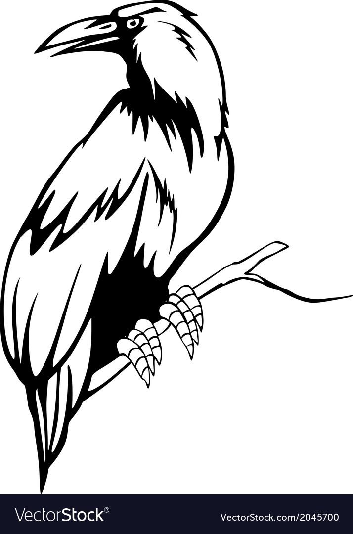 Black raven vector   Price: 1 Credit (USD $1)