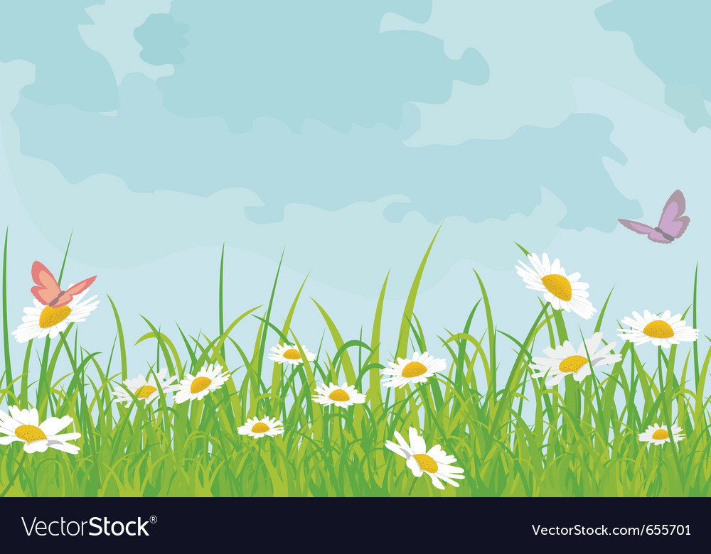 Daisy field vector | Price: 1 Credit (USD $1)