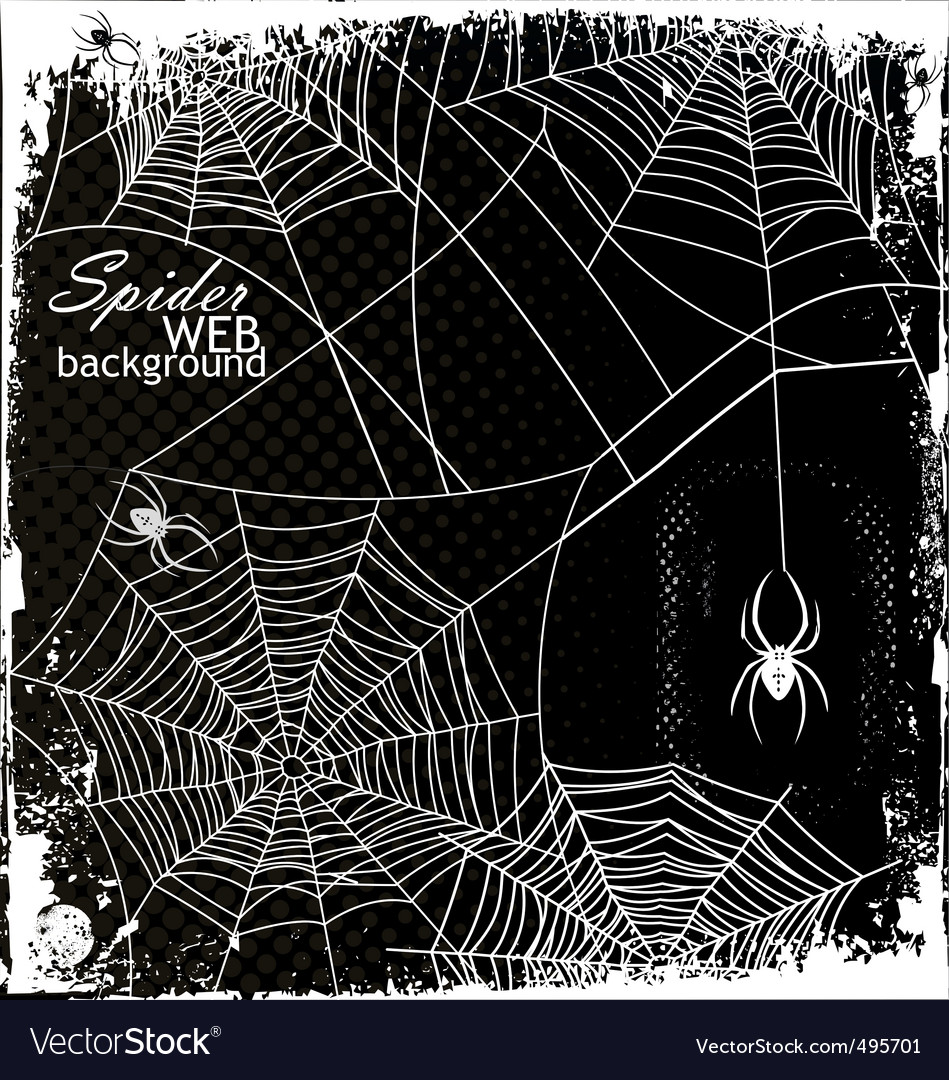 Spider web background vector | Price: 1 Credit (USD $1)