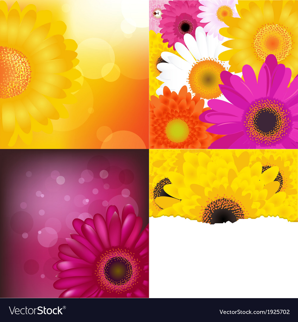 Flower backgrounds set vector | Price: 1 Credit (USD $1)
