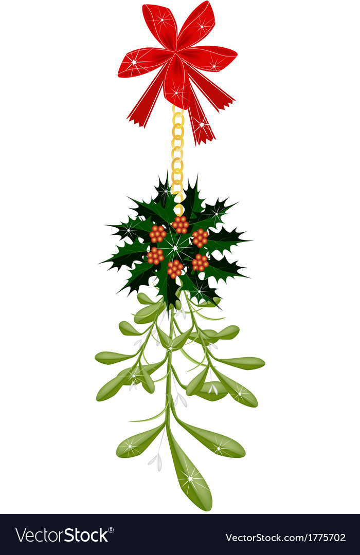 Green mistletoe and christmas holly with a red bow vector | Price: 1 Credit (USD $1)
