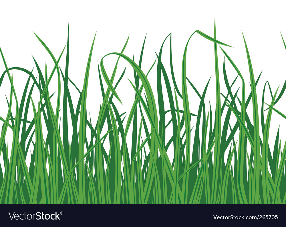 Grass seamless background vector | Price: 1 Credit (USD $1)