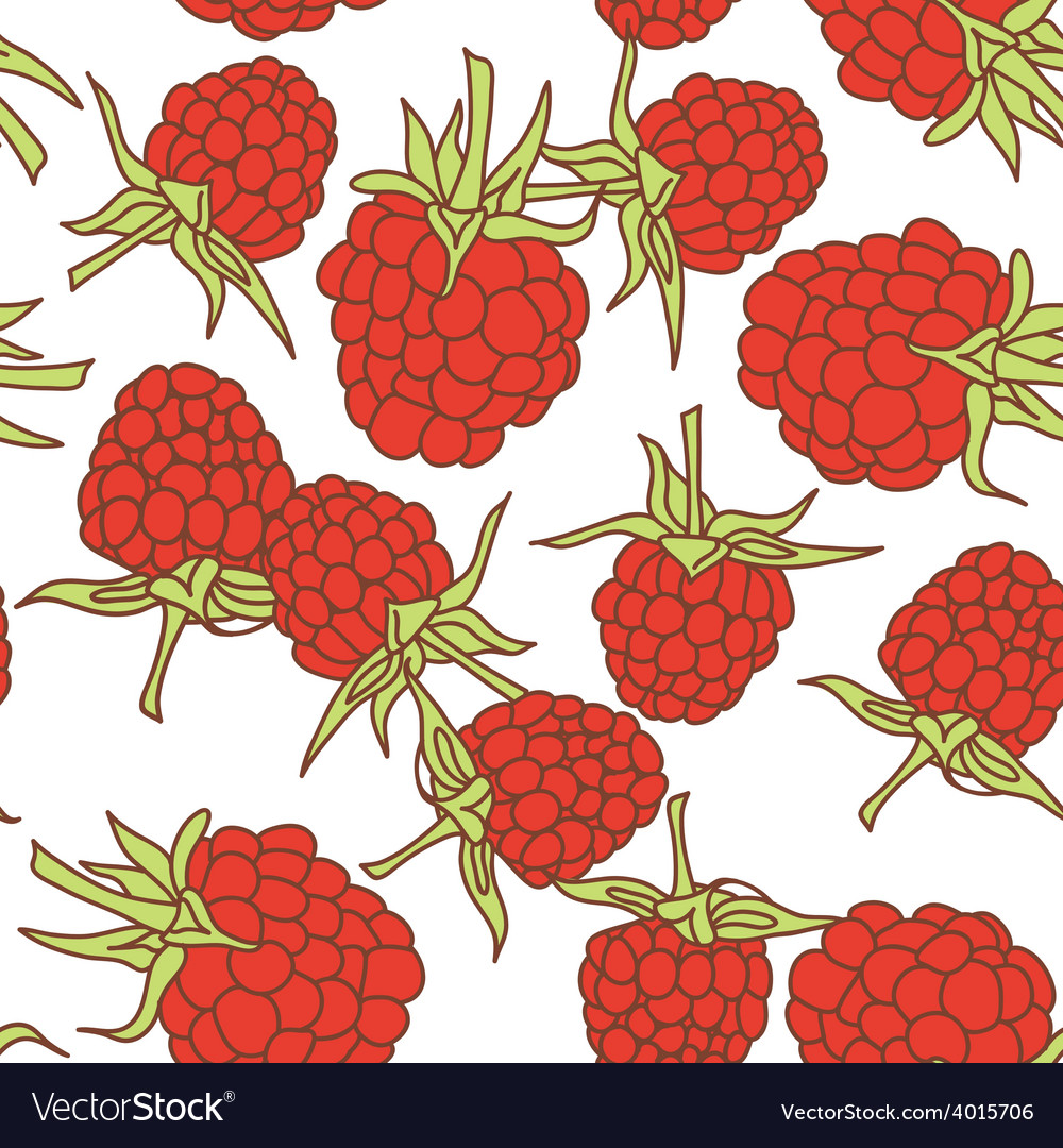 Ripe raspberry seamless pettern isolated on white vector | Price: 1 Credit (USD $1)