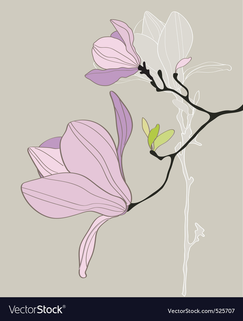 Card with stylized magnolia vector | Price: 1 Credit (USD $1)