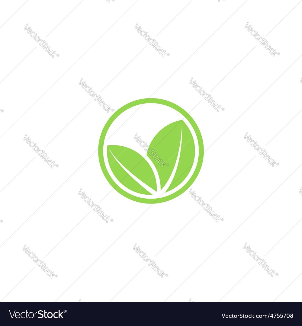 Circle mockup eco logo green leafs of plant vector   Price: 1 Credit (USD $1)
