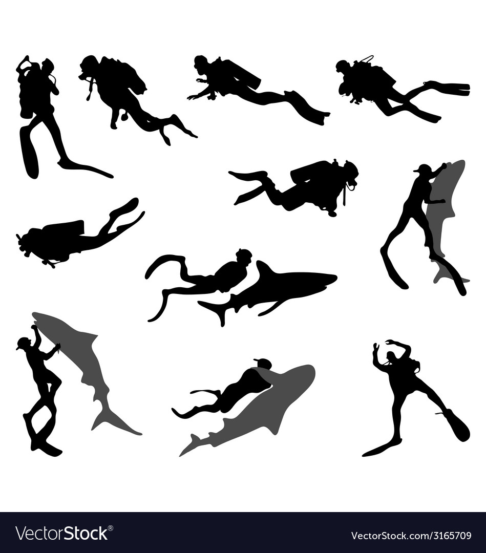 Divers and sharks vector | Price: 1 Credit (USD $1)