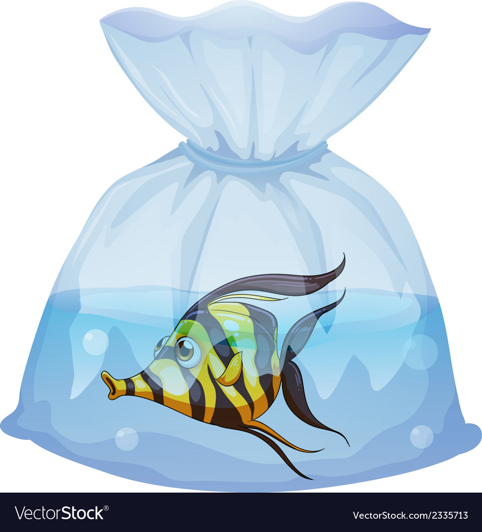 A fish inside the plastic container vector | Price: 1 Credit (USD $1)