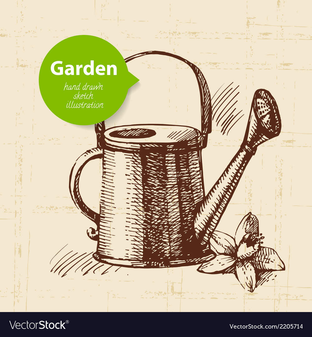 Vintage sketch garden background vector | Price: 1 Credit (USD $1)