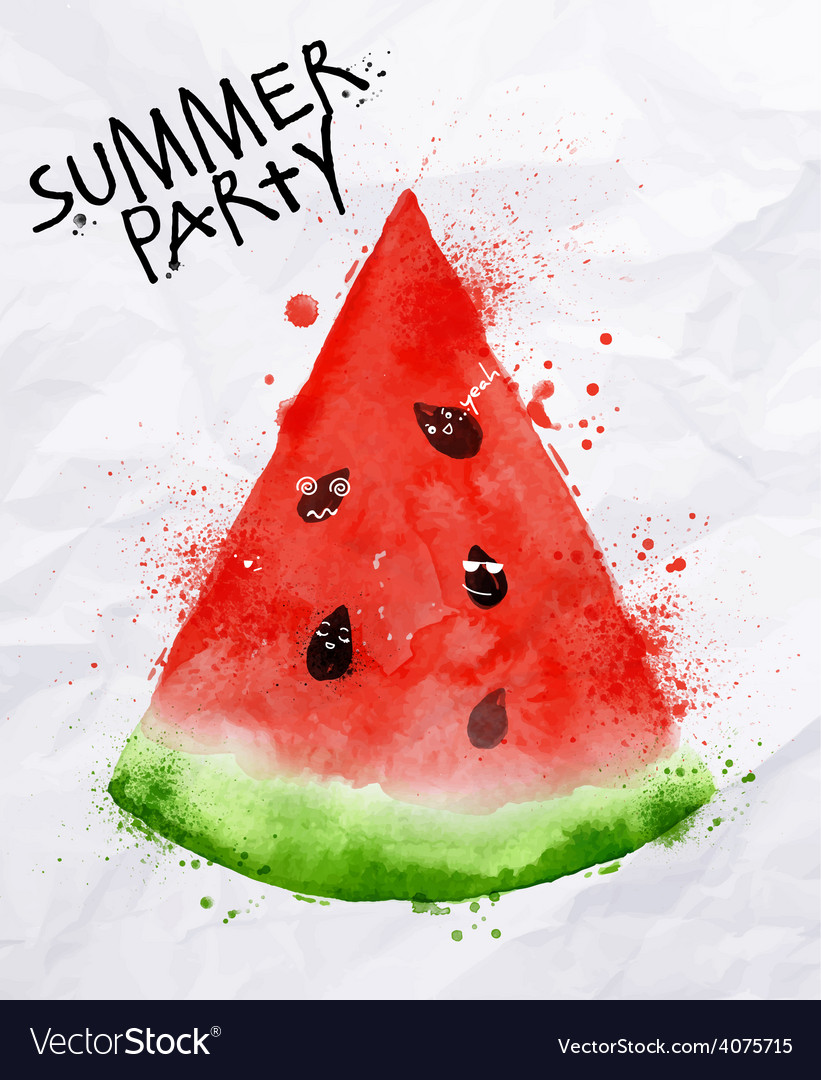 Poster summer party watermelon vector