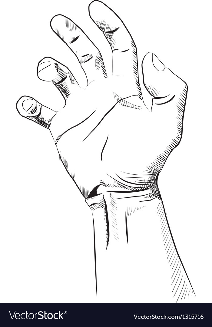 Mans hand isolated on white vector | Price: 3 Credit (USD $3)