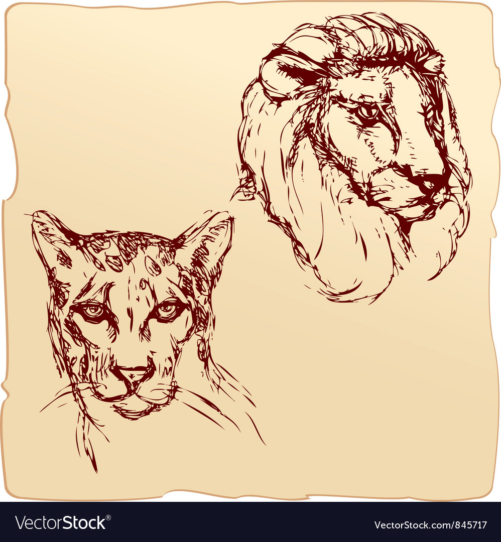 Lion and cheetah vector | Price: 1 Credit (USD $1)