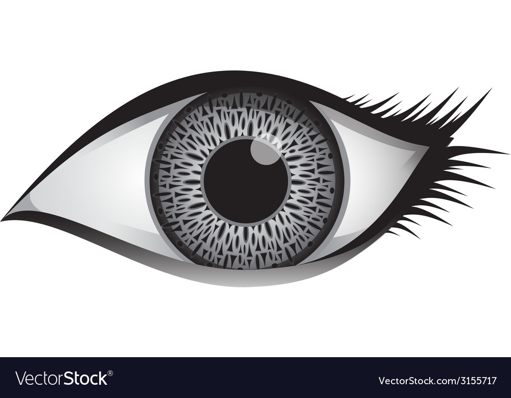 Single female eye vector | Price: 1 Credit (USD $1)