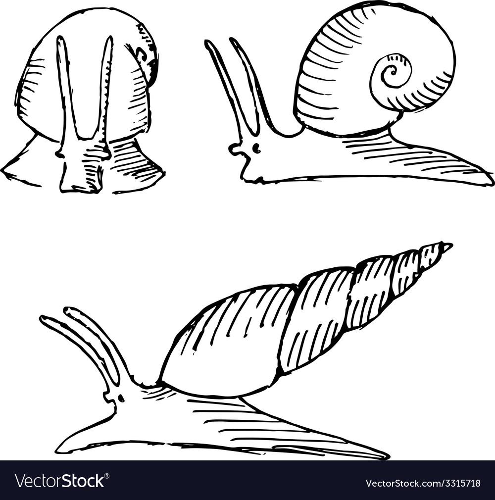 Snail set vector | Price: 1 Credit (USD $1)