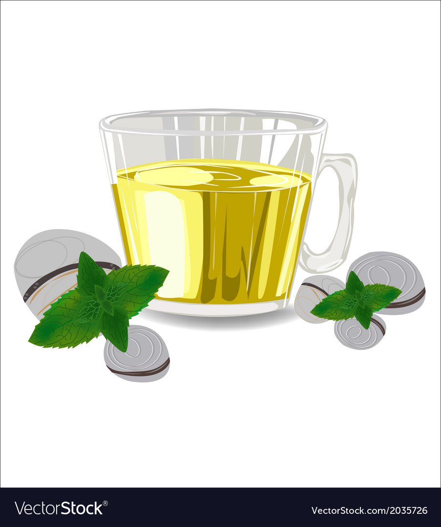 Glass cup of tea with mint leaves vector | Price: 1 Credit (USD $1)