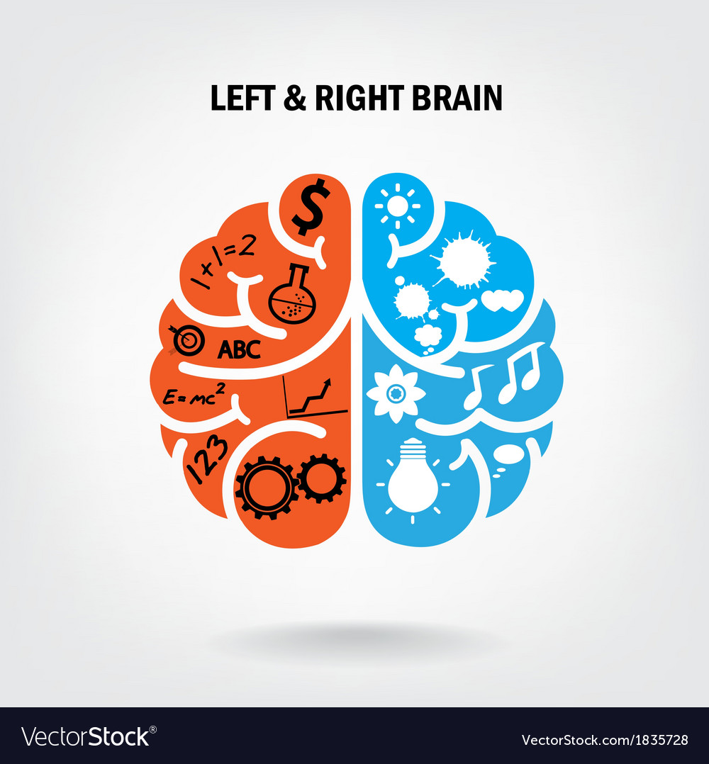Creative left brain and right brain vector | Price: 1 Credit (USD $1)