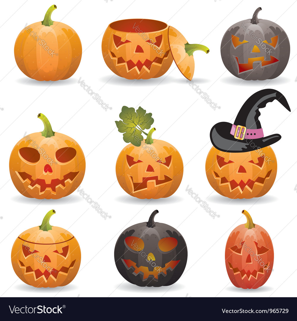 Collect pumpkin for halloween vector | Price: 3 Credit (USD $3)