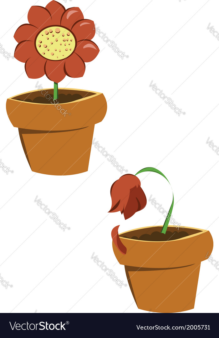 Pots of flowers vector | Price: 1 Credit (USD $1)