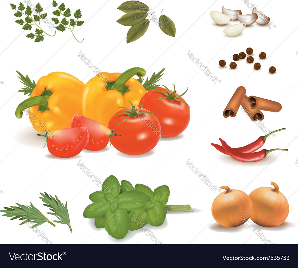 Group of vegetables vector | Price: 3 Credit (USD $3)
