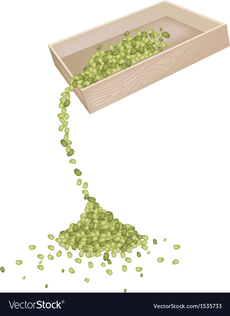 Mung beans dropped from a wooden container vector | Price: 1 Credit (USD $1)