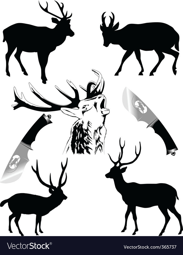 Deers vector | Price: 1 Credit (USD $1)