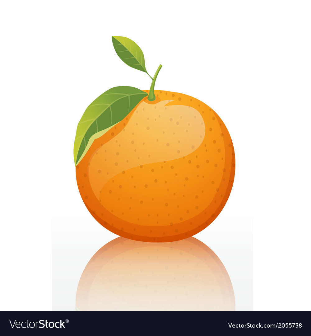 Shiny-orange-fruit-white-background vector | Price: 1 Credit (USD $1)