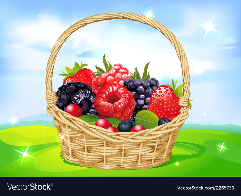 Basket full of fruits on green meadow - vector   Price: 1 Credit (USD $1)
