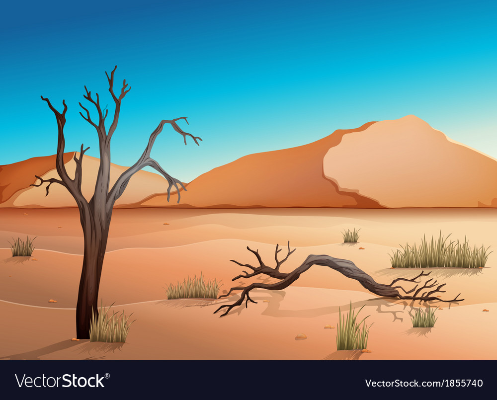 Ecosystem desert vector | Price: 3 Credit (USD $3)