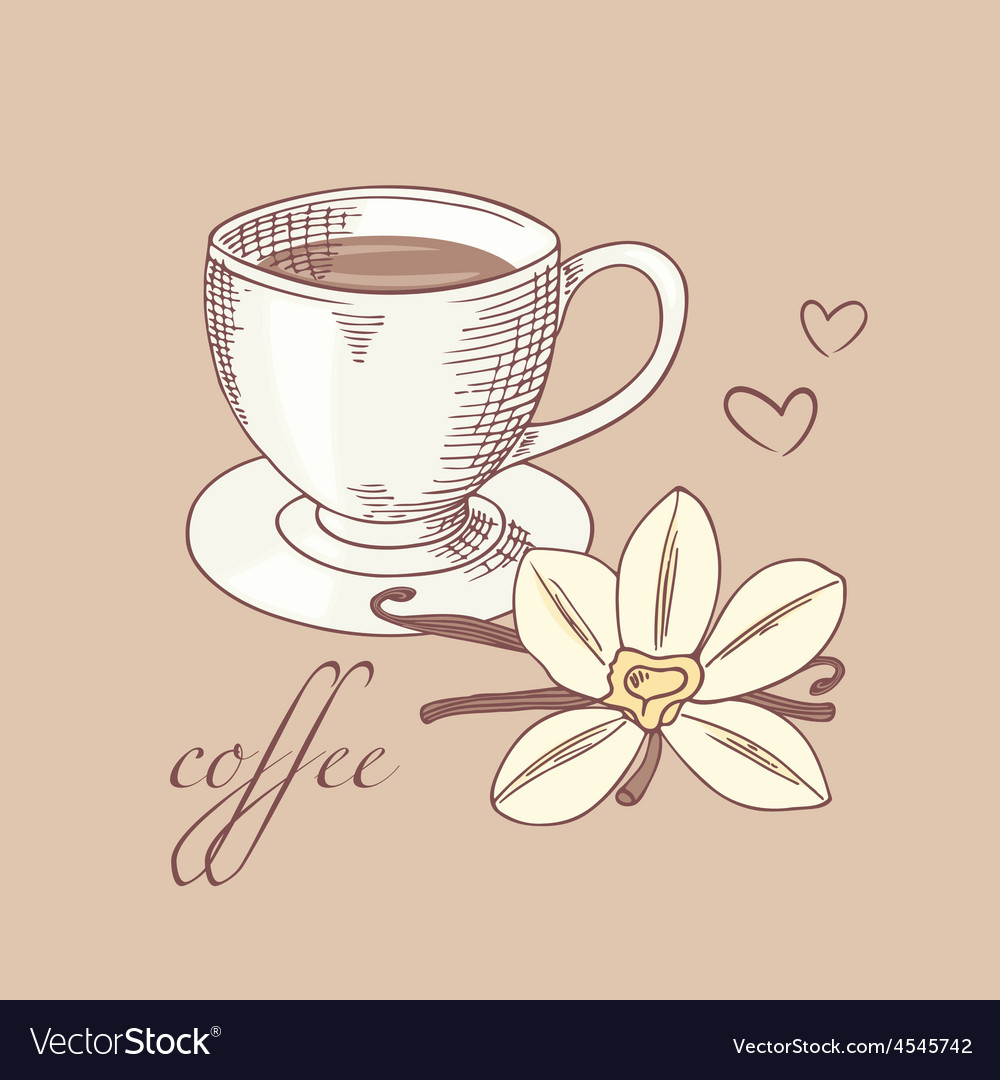 Sketched cofee cup with vanilla flower vector | Price: 1 Credit (USD $1)
