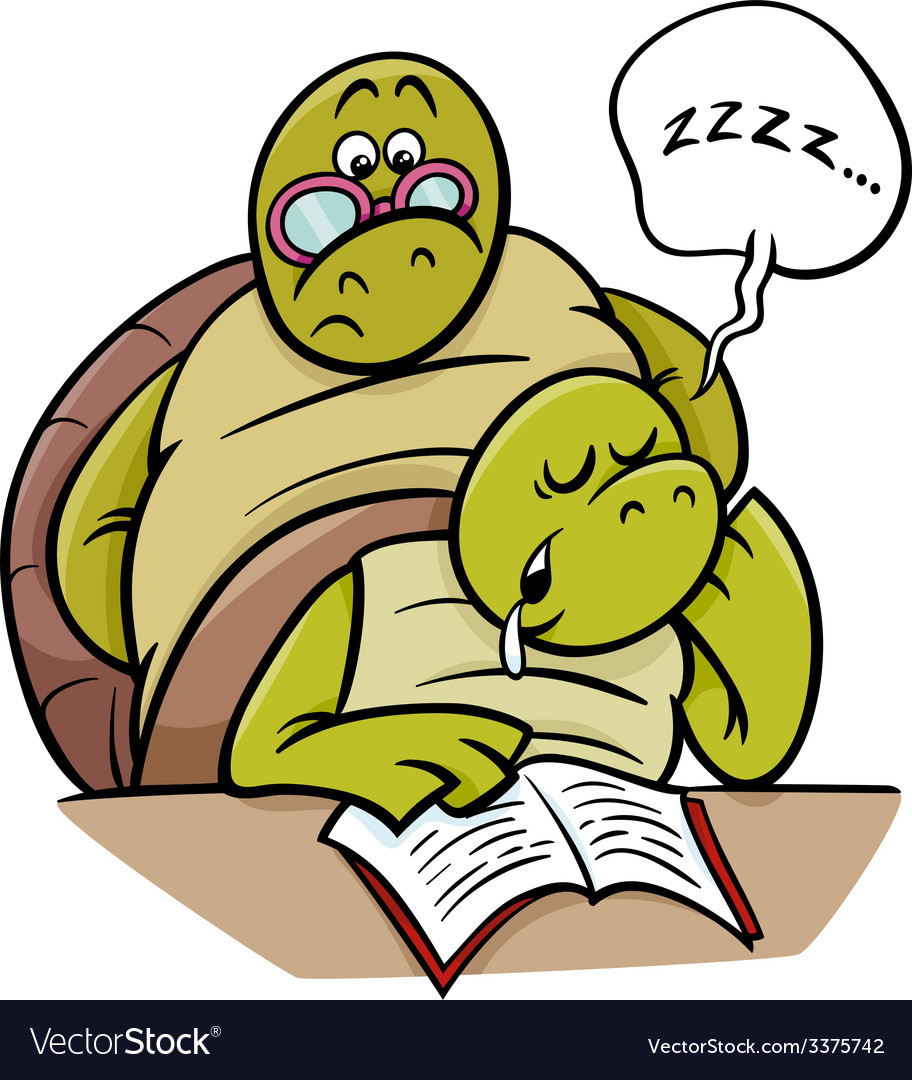 Sleeping turtle on lesson cartoon vector | Price: 1 Credit (USD $1)