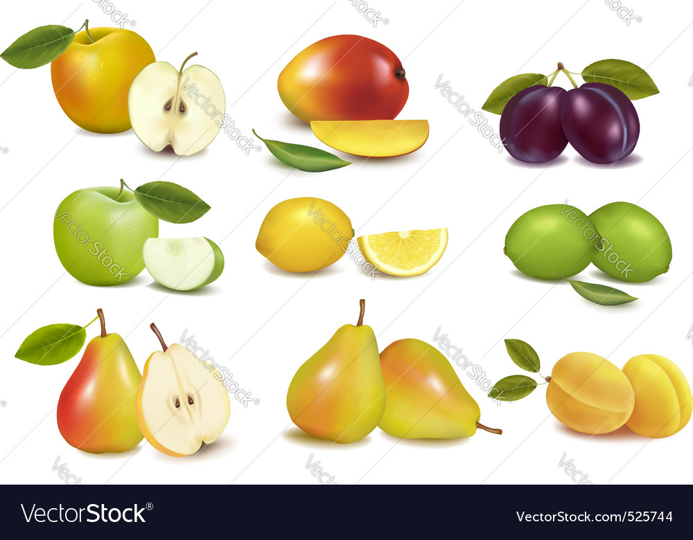 Set of color fruit vector | Price: 3 Credit (USD $3)