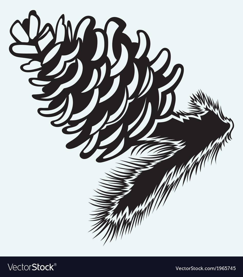 Pine strobile vector | Price: 1 Credit (USD $1)