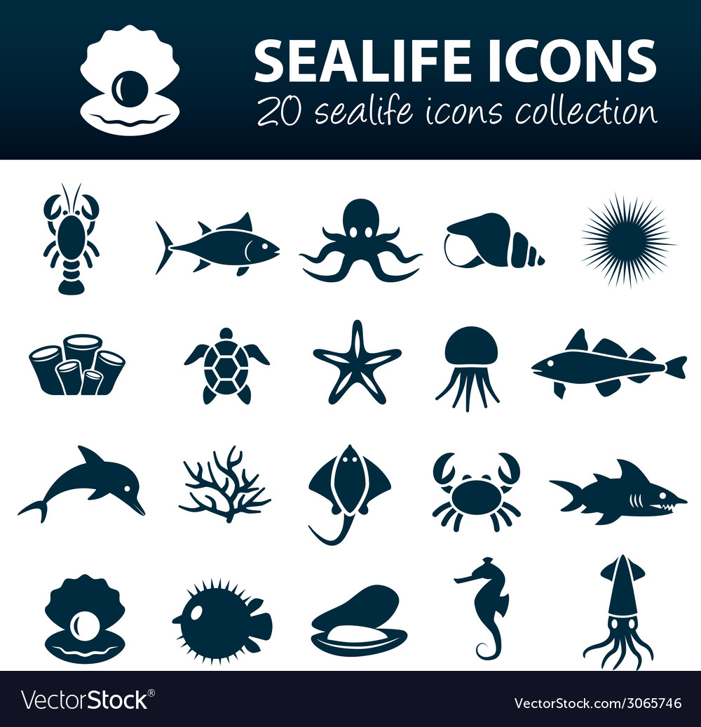 Sealife icons vector | Price: 1 Credit (USD $1)