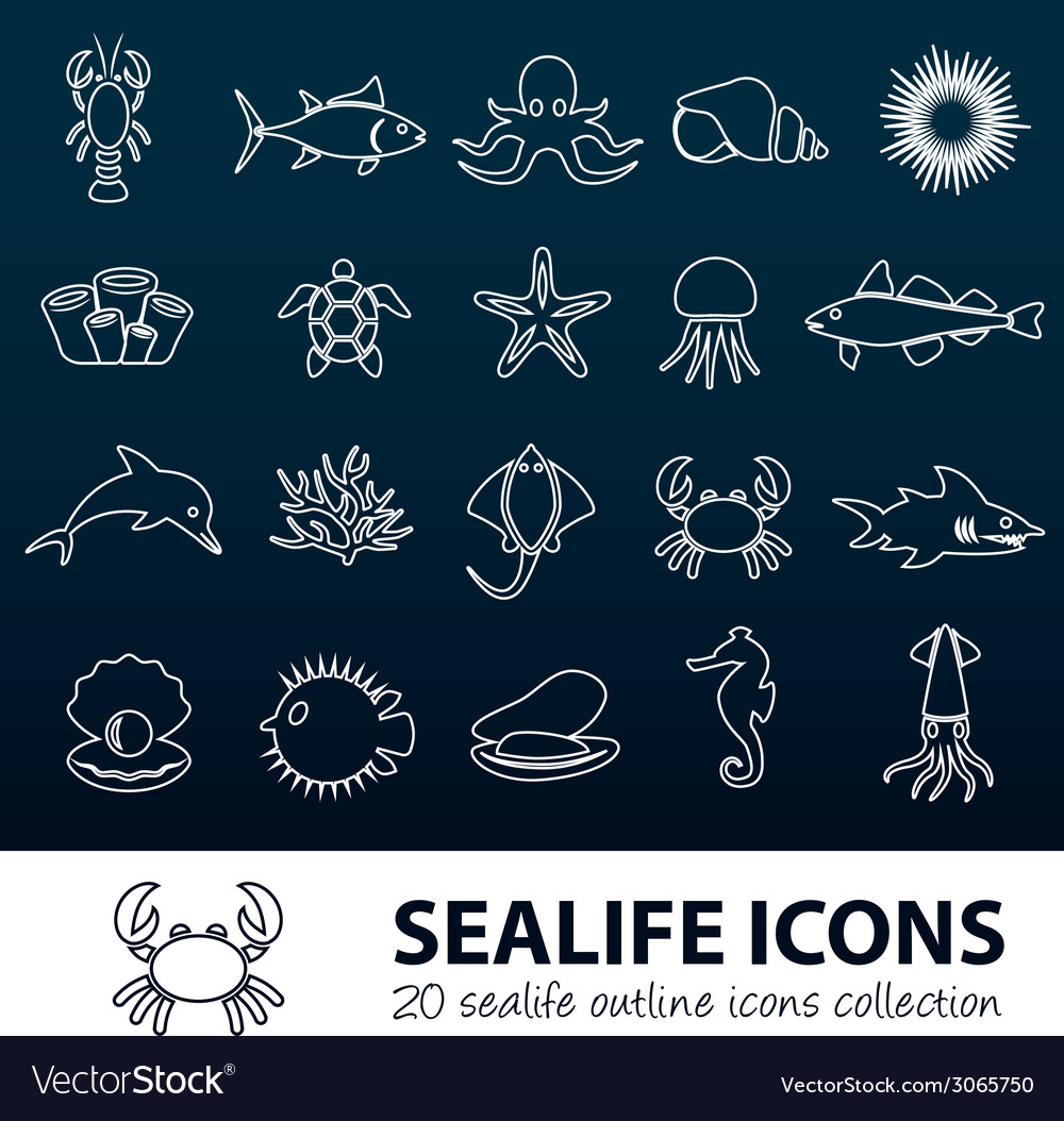 Sealife outline icons vector | Price: 1 Credit (USD $1)