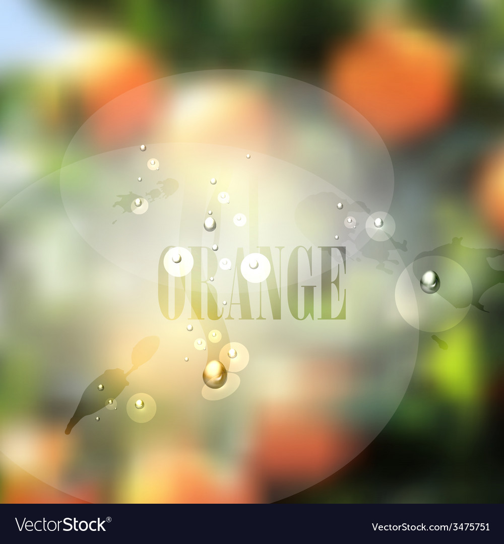 Fresh blurred food background with oranges water vector | Price: 1 Credit (USD $1)