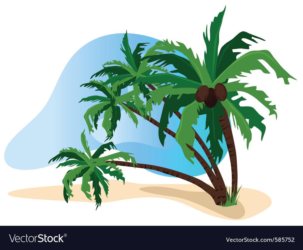 Beach palms vector | Price: 1 Credit (USD $1)