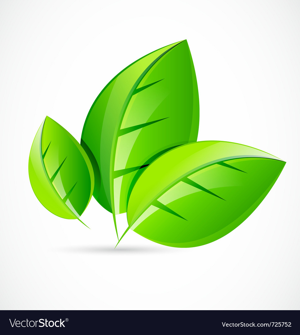 Green leaf concept vector | Price: 1 Credit (USD $1)