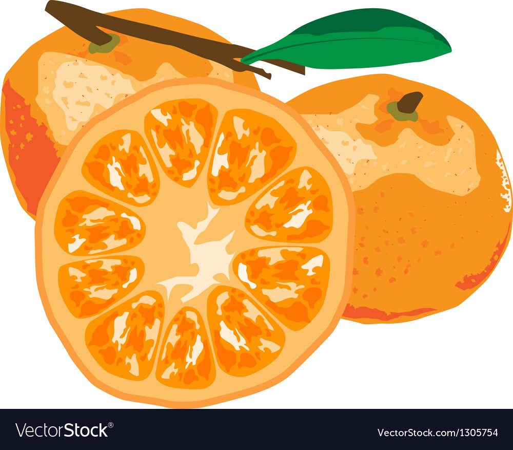 Orange paint by vector | Price: 1 Credit (USD $1)