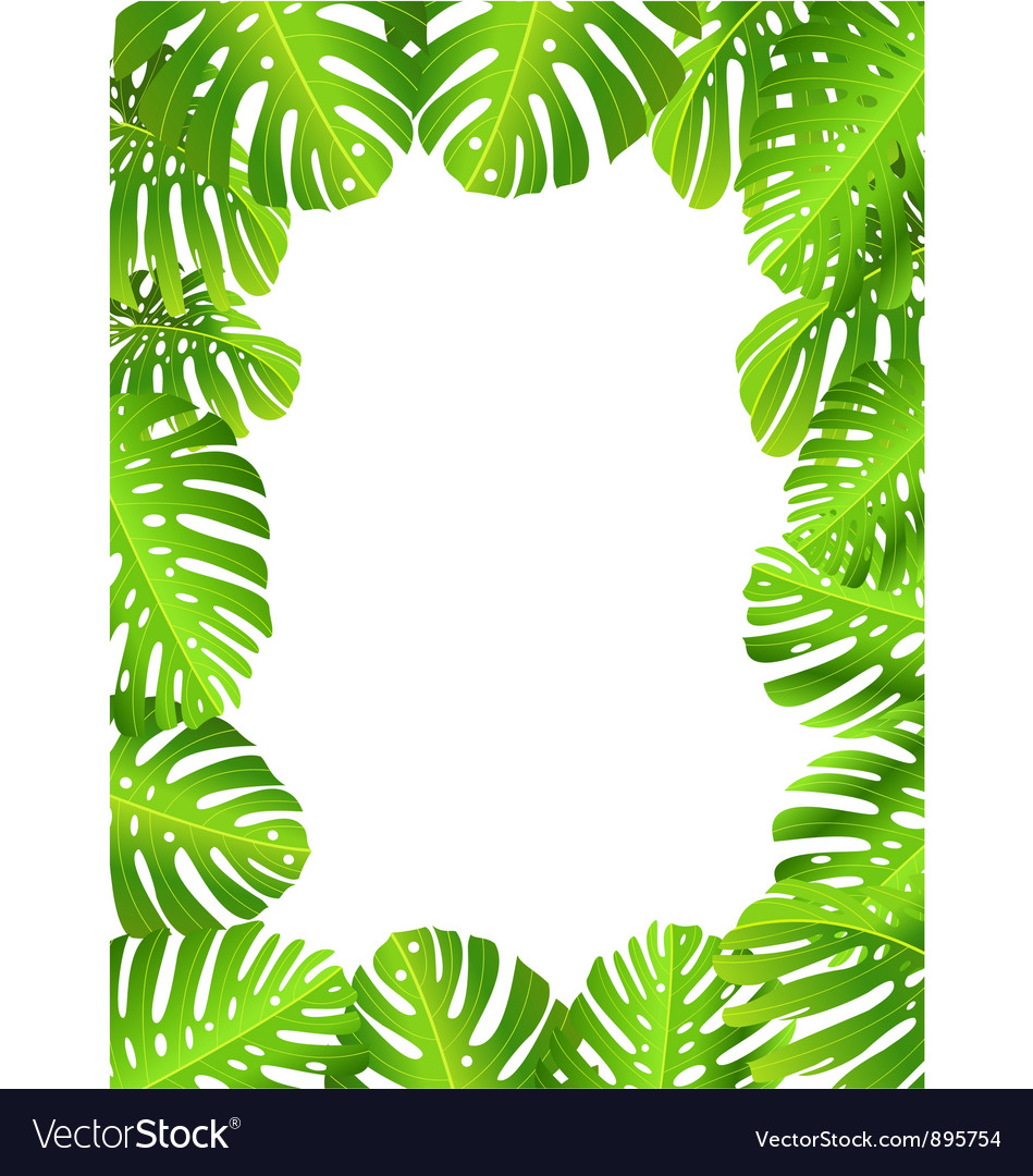 Tropical leaf background vector   Price: 1 Credit (USD $1)