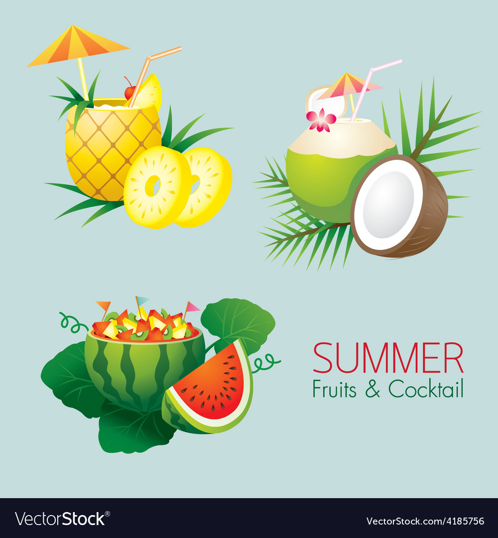 Coconut pineapple watermelon fruit and cocktail vector | Price: 3 Credit (USD $3)