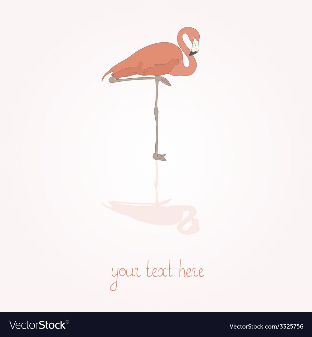 Flamingostand12 vector | Price: 1 Credit (USD $1)