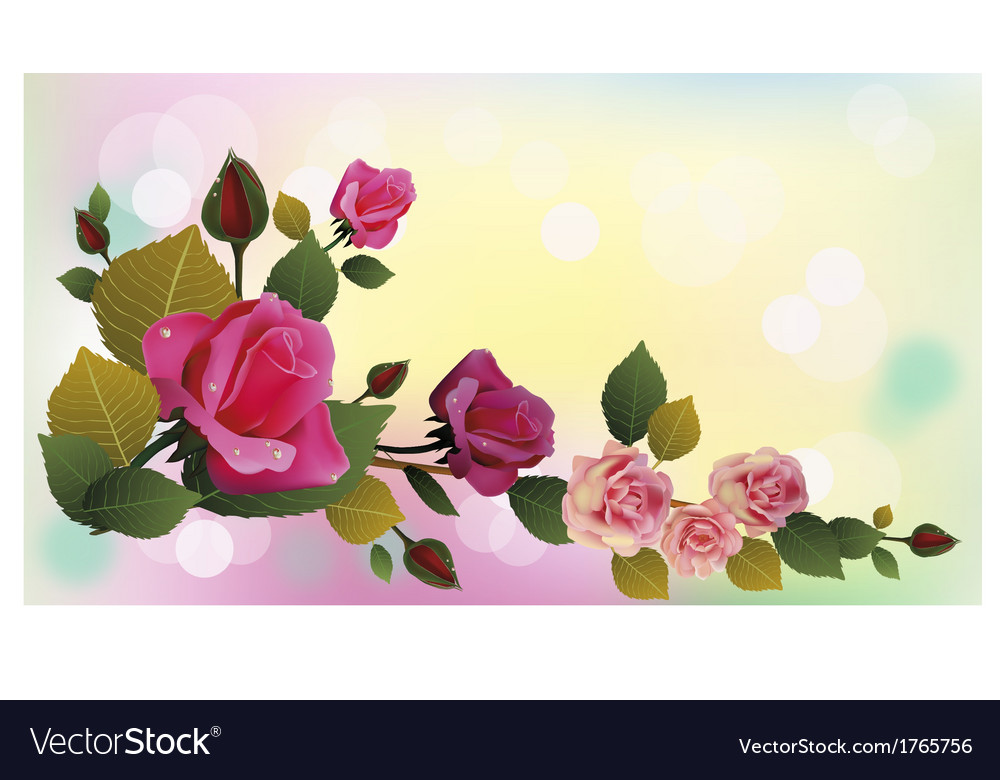 Rose the most beautiful flowers in the world vector | Price: 1 Credit (USD $1)
