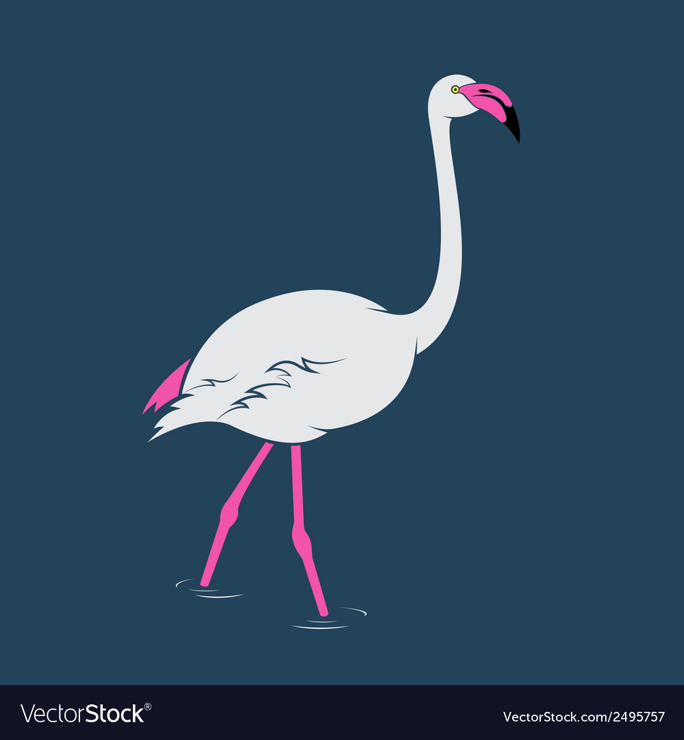 Image of an flamingo vector | Price: 1 Credit (USD $1)